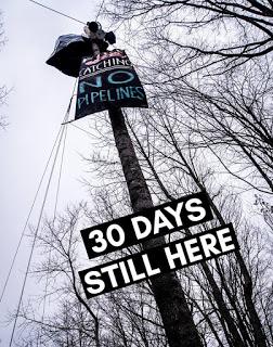 [EE.UU.] Comienza la Resistencia contra el Oleoducto de la Costa Este. Zona Autónoma Hellbender